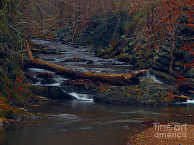 Art Print featuring the photograph Little Falls by Donald C Morgan