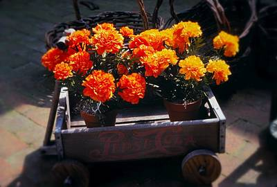 Photograph - Little Flower Wagon by Rodney Lee Williams