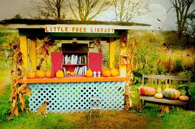 Photograph - Little Free Library by Diana Angstadt