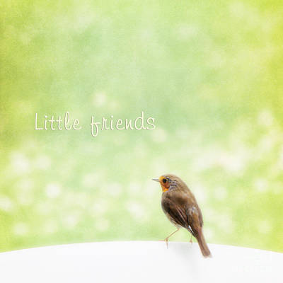 Robin Mixed Media - Little Friends by Angela Doelling AD DESIGN Photo and PhotoArt