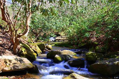 Photograph - Little Gap Creek 2 by Lisa Wooten