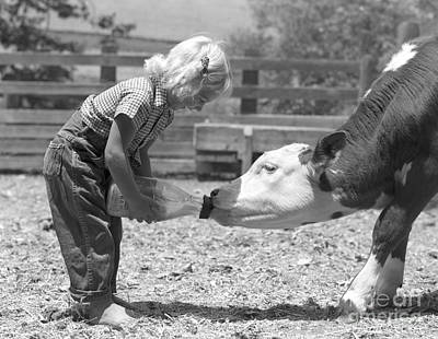 Pet Care Photograph - Little Girl Bottle-feeding A Calf by H. Armstrong Roberts/ClassicStock