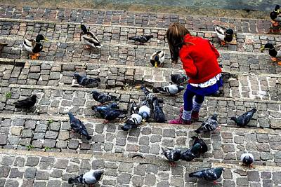 Photograph - Little Girl Feeding Ducks And Pigeons by Marilyn Burton