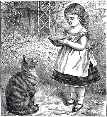 Drawing - Little Girl Gives Her Cat Its Dinner by R Muirhead Art
