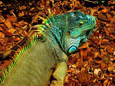 Little Godzilla Original by Andy Za