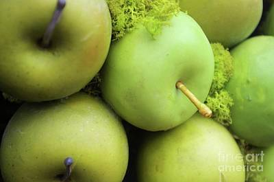 Photograph - Little Green Apples  by John S