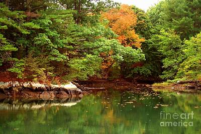 Photograph - Little Harbor Pond by Marcia Lee Jones