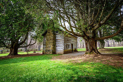Photograph - Little House On The Hill by Michael Scott