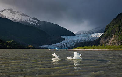 Photograph - Little Icebergs by Michael Balen