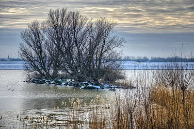 Photograph - Little Island In Winter by Frans Blok