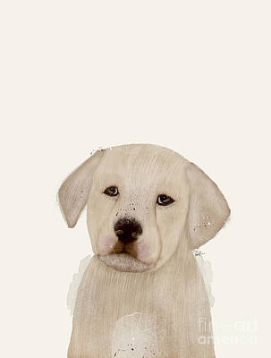 Painting - Little Labrador by Bleu Bri