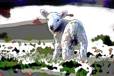 Mixed Media - Little Lamb by Charles Shoup