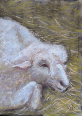 Little Lamb Art Print by Wendie Thompson