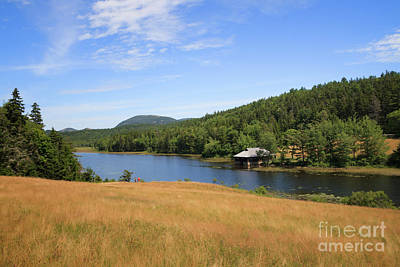Photograph - Little Long Pond Acadia by Elizabeth Dow