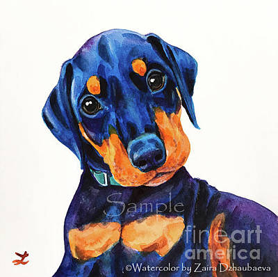 Doberman Pinscher Wall Art - Painting - Little Maverick by Zaira Dzhaubaeva