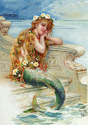 Mermaids Drawing - Little Mermaid by E S Hardy