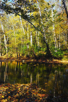Photograph - Little Miami River by Beth Akerman