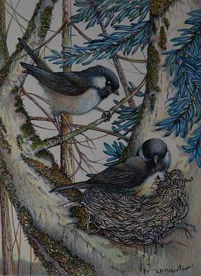 Chickadee Drawing - Little Mother by Catherine Robertson