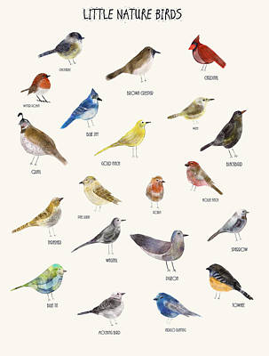 Bunting Digital Art - Little Nature Birds by Bri B