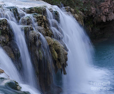 Photograph - Little Navajo Falls Grand Canyon by Bob Christopher