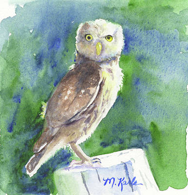 Painting - Little Owl by Marsha Karle