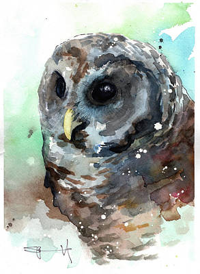Painting - Little Owl by Sean Parnell