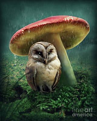 Fungi Digital Art - Little Owl Under Mushroom by Elena Schweitzer