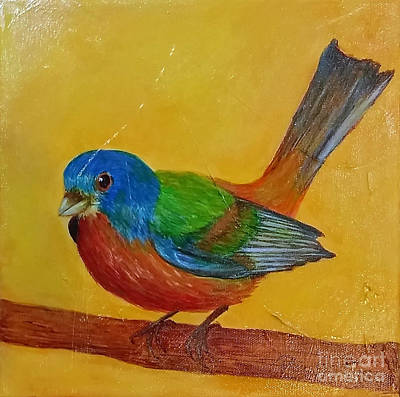 Painting - Little Painted Bunting by Phyllis Howard