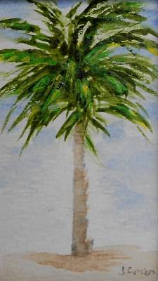 Painting - Little Palm Tree by Jamie Frier