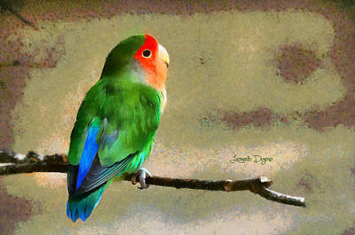 Macaw Painting - Little Periquito by Leonardo Digenio