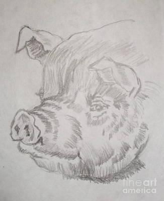 Little Piggy Print by Nancy Rucker