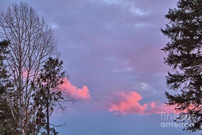 Photograph - Little Pink Clouds by Victor K