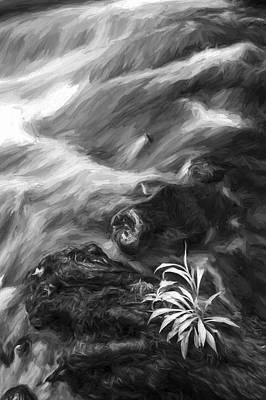 Little Plant II Art Print by Jon Glaser