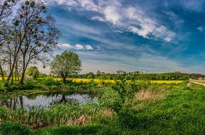 Photograph - Little Pond Near A Rapeseed Field by Dmytro Korol