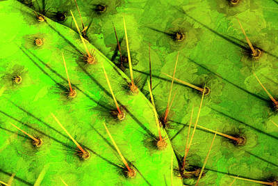 Abstract Digital Art Photograph - Prickly Pear by Paul Wear