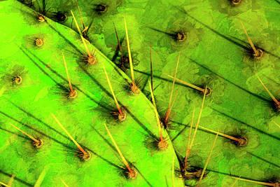 Prickly Pear Art Print by Paul Wear