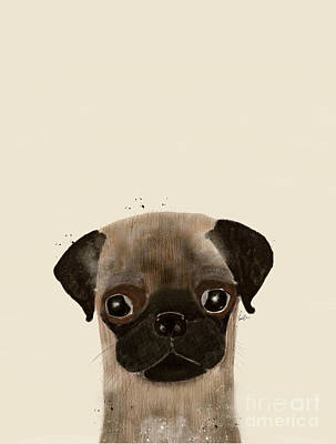 Dog Pop Art Photograph - Little Pug by Bri B