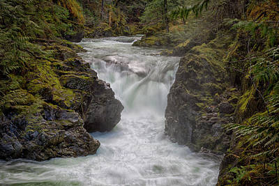 Photograph - Little Qualicum Lower Falls by Randy Hall
