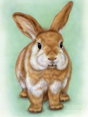 Little Rabbit 1 Art Print