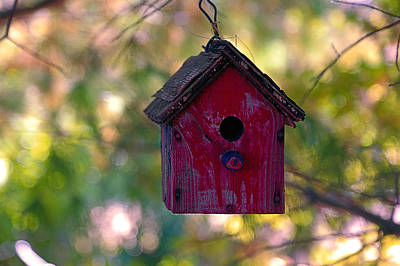 Comic Character Paintings - Little Red Bird House by Theresa Campbell