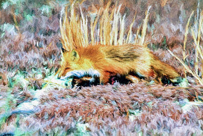 Fox Digital Art - Little Red Fox In Habitat by Geraldine Scull