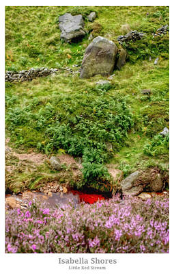 Digital Art - Little Red Stream by YoursByShores Isabella Shores