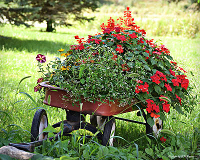 Little Red Wagon With Flowers Print by Kathy M Krause