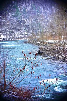 Photograph - Little River Run by Tracy Rice Frame Of Mind
