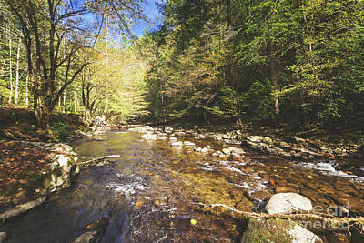 Photograph - Little River, Smoky Mountains by Joan McCool