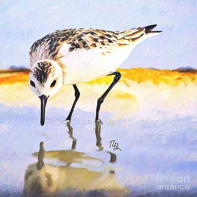 Painting - Little Sandpiper by Tammy Lee Bradley