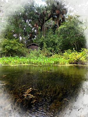 Photograph - Little Shack By The Water by Sheri McLeroy