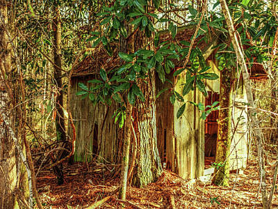 Photograph - Little Shack In The Woods by Lanita Williams