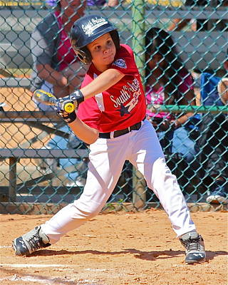 Photograph - Little Slugger by Denise Mazzocco