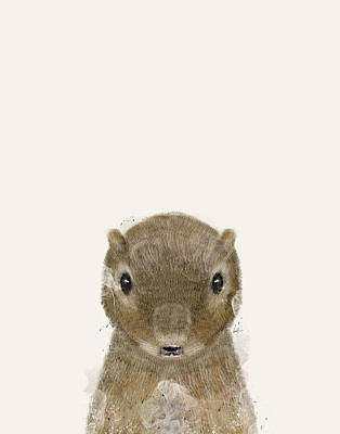 Painting - Little Squirrel by Bleu Bri